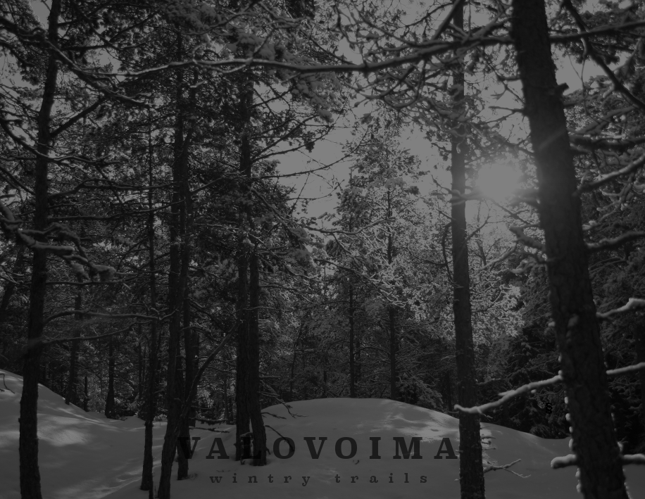 Valovoima%20-%20Wintry%20trails.png
