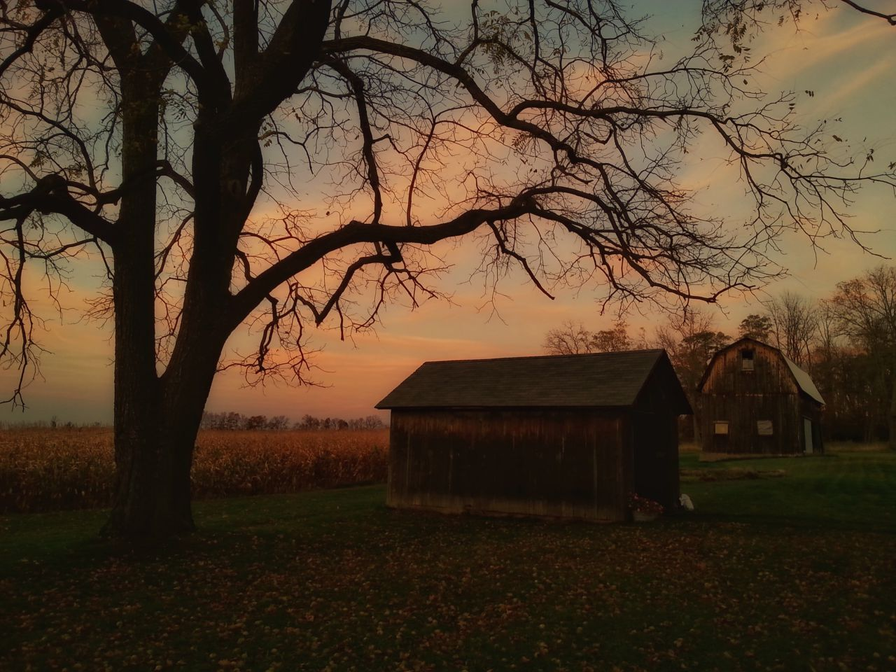Winds of change in the Finger Lakes (photo)